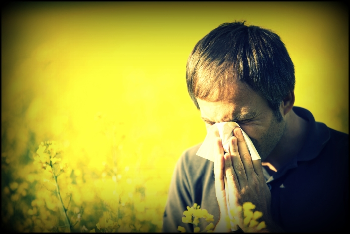 grass pollen allergies