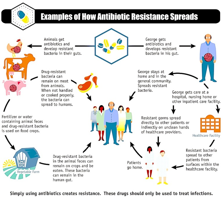 the bad side and threats of antibiotics to our health